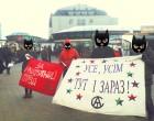 АСТ агитировал за бесплатный проезд в Киеве