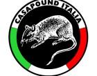 Новая Неофашистская Стратегия: Casa Pound